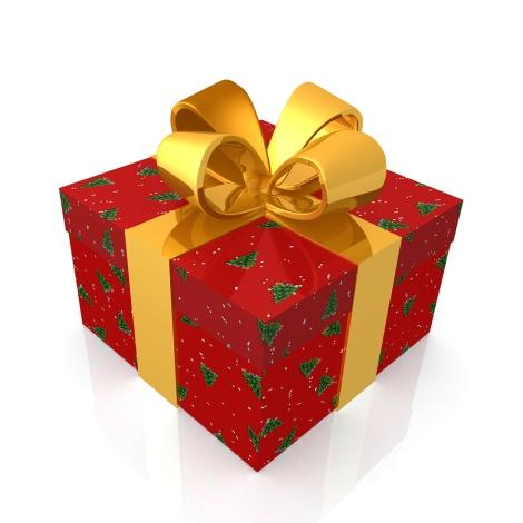 20091214-christmas-present